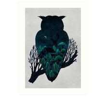 Owlscape Art Print