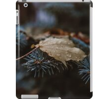 Realize Deeply iPad Case/Skin