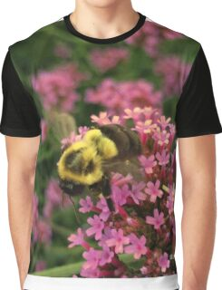 Bumble Bee in Late Summer Graphic T-Shirt