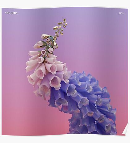 Flume - Skin Album Cover Artwork Poster