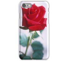 Beautiful Red Rose iPhone Case/Skin