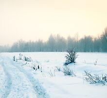 Winter Wonderland by mjkrynicka