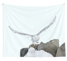 Descendant from heaven Wall Tapestry