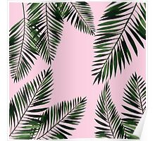 Watercolor tropical palm leaves on pink background Poster