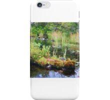 Lake Study iPhone Case/Skin