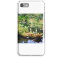 Lake Study iPhone Case/Skin