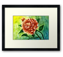 Rhododendrum, my first flower painting. Framed Print