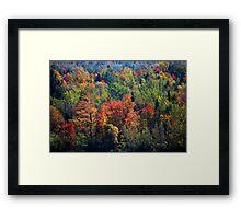 Fall in Franklin Framed Print