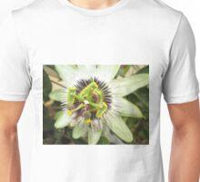Passiflora caerulea Unisex T-Shirt