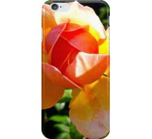 Peach Rose Budding iPhone Case/Skin
