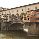 Ponte Vecchio by Elena Skvortsova