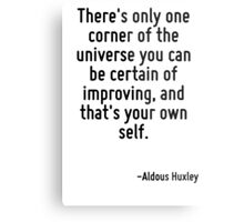 There's only one corner of the universe you can be certain of improving, and that's your own self. Metal Print