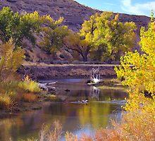 Truckee River  by SB  Sullivan
