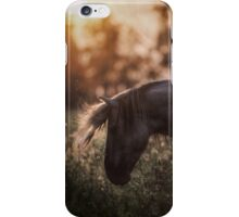 Summertime, ...And the cotton is high,,, iPhone Case/Skin