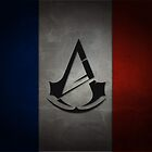 Assassin's Creed Unity Flag by siriusreno