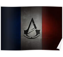 Assassin's Creed Unity Flag Poster