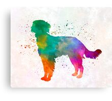 Blue Picardy Spaniel in watercolor Canvas Print