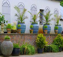Pretty Pots All In A Row by Fara