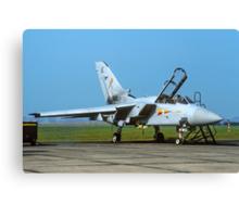 Panavia Tornado F.2T ZD904/AE Canvas Print