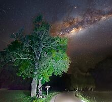 Majestic tree under the milky way by Delfino