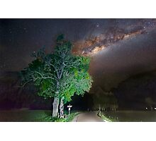 Majestic tree under the milky way Photographic Print