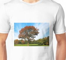 Brooke Park, Derry - autumn Unisex T-Shirt