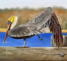 What Pelicans Do (2) by Phyllis Beiser