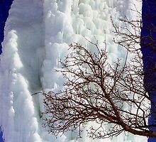 Ice Tower by Alberto  DeJesus