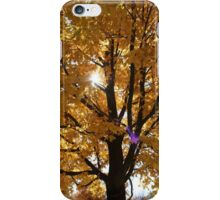 Sunburst Tree iPhone Case/Skin