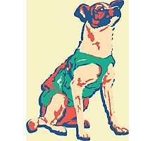 Laika Space Dog Vector Russian Propaganda Pup Retro Old-Timey Vintage Photographic Print