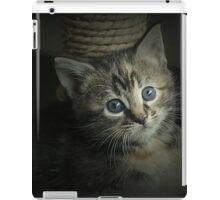 A Bundle of Fluffs iPad Case/Skin