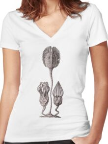Plants and Animals, ocean, sea creature, Cystoidea, cystoids, marine, psychedelic, art, illustration, haeckel,  Women's Fitted V-Neck T-Shirt