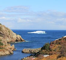 Welcome to my backyard :)  Iceberg in Quidi Vidi by NewfieKeith