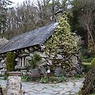 Ty Hyll Ugly House : Capel Curig, North Wales. by AnnDixon