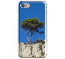 A lonely tree on the rocks iPhone Case/Skin