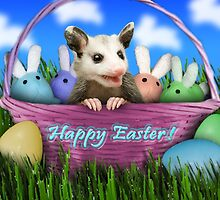 Easter Opossum by jkartlife