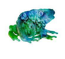 Sir Frog  by Schyljuk