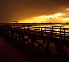 Evening Glow by Svetlana Sewell