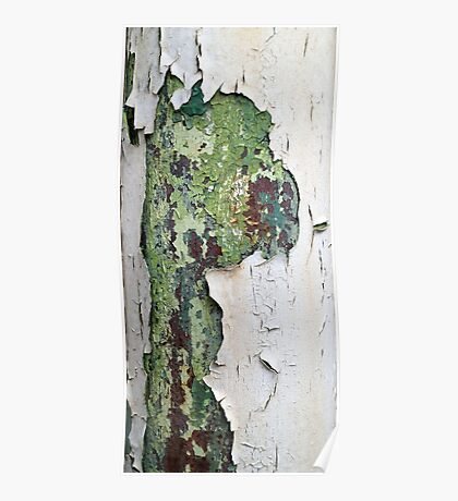 white green paint rust metal texture pattern Poster