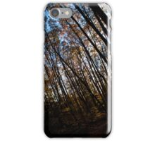 Darkness in the Forest iPhone Case/Skin