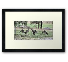 The FFF. (2) Framed Print