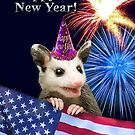 New Years Opossum by jkartlife
