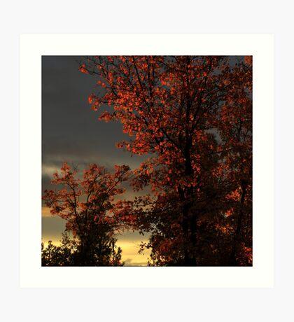 Autumn's First Light Art Print