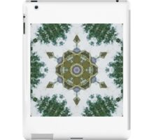Modern Mandala Art 3 iPad Case/Skin