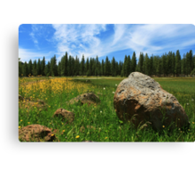 Different Boulder Same Springtime Canvas Print