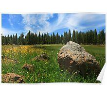 Different Boulder Same Springtime Poster