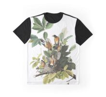 American Robin, by John Audubon Graphic T-Shirt