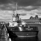 Sydney Cove by Brett Rogers