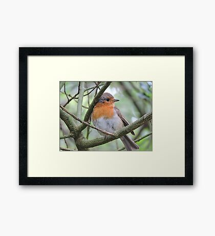 If In Doubt Wear Red Framed Print