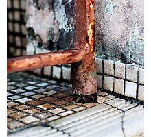 { Corners: where the walls meet #19 } Photographic Print